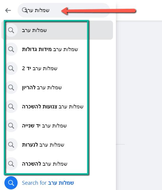 תוצאות החיפוש באמצעות פייסבוק - חיפוש בפייסבוק